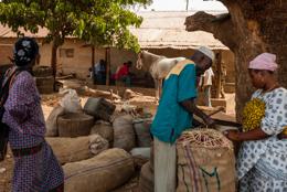 Africa;Benin;Horse;Horses;Kaleidos;Kaleidos-images;Man;Men;Sales;Tarek-Charara;Woman;Women