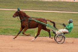 Domaine-de-Grosbois;Drivers;French-Trotters;Grosbois;Harness-racing;Horse;Horses;Kaleidos;Kaleidos-images;Marolles-en-Brie;Sulkies;Sulky;Tarek-Charara;Toni-Ripoll;Trot;Trotters;Trotting