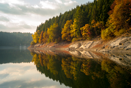 Colors;Colours;Dam;Kaleidos;Kaleidos-images;Landscapes;Tarek-Charara;Forrests;Light;Trees;Water;Lakes;Fall